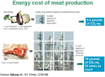energy-cost-of-meat-product